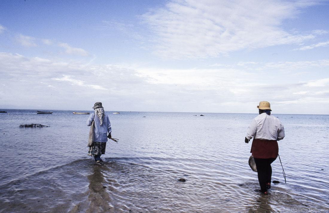 la maree est trop basse pour pecher en pirogue